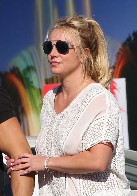 Britney Spears Conservatorship to Remain As Is Until 2021