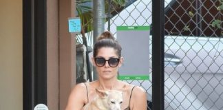 Ashley Greene – Walking Her Dogs in Studio City