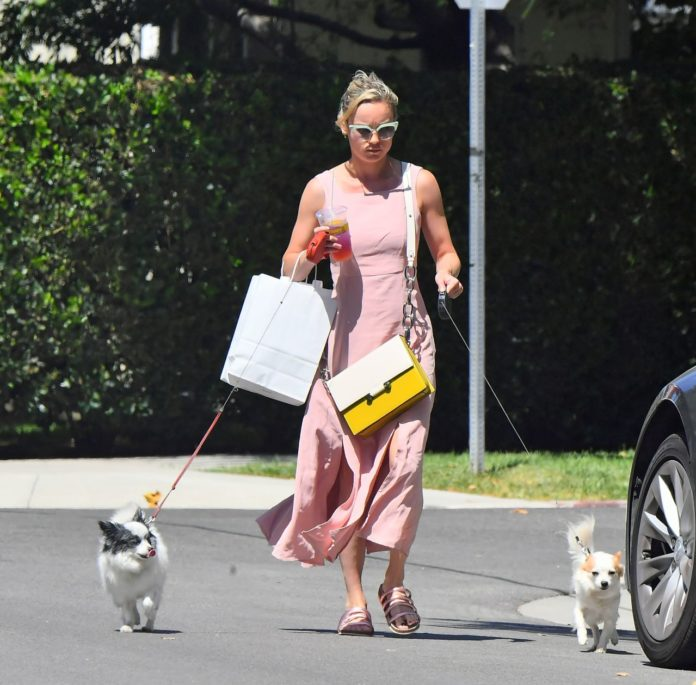 Brie Larson With Her Dogs – West Hollywood