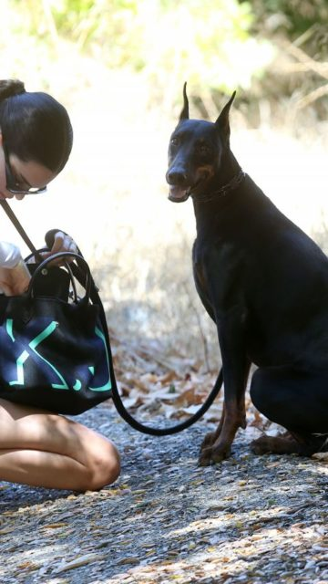 Kendall Jenner – Out For a Hike With Her Dog in Los Angeles